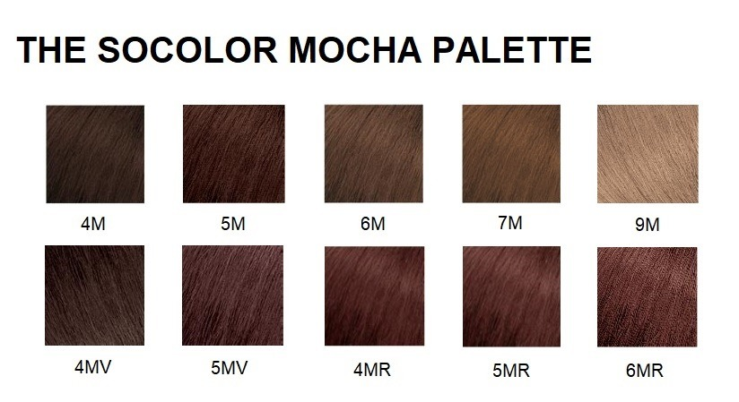 The SoColor Mocha Pallette.jpg